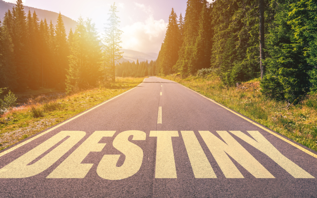 Designing Your Destiny – an unforgettable retreat with Dr. Joe Dispenza